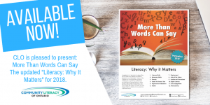 Twitter/Facebook graphic: Literacy Why it Matters 2018
